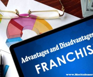 Advantages And Disadvantages Of Business Franchising