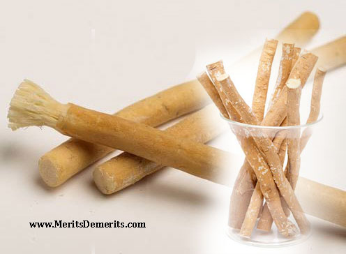 benefits of using miswak toothbrush chew stick for teeth health. Black Bedroom Furniture Sets. Home Design Ideas